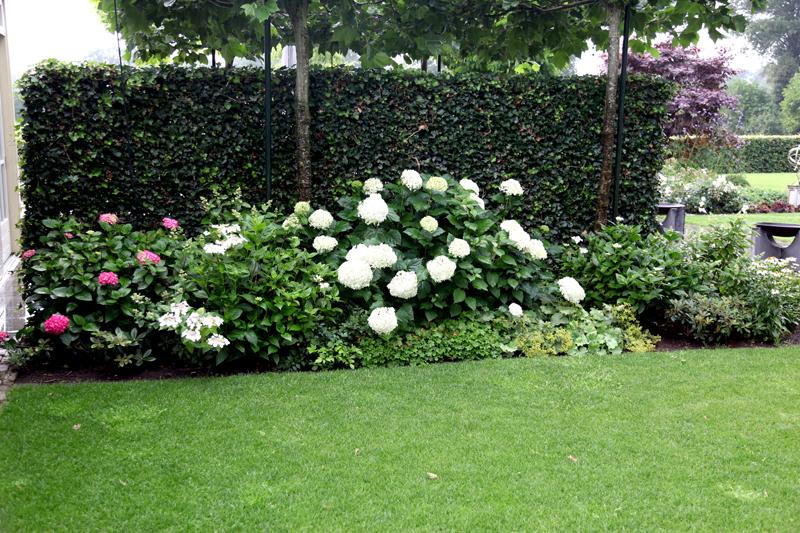 Enorme natuurlijke vijver in landelijke tuin stoss hoveniers - Alle tuin ...