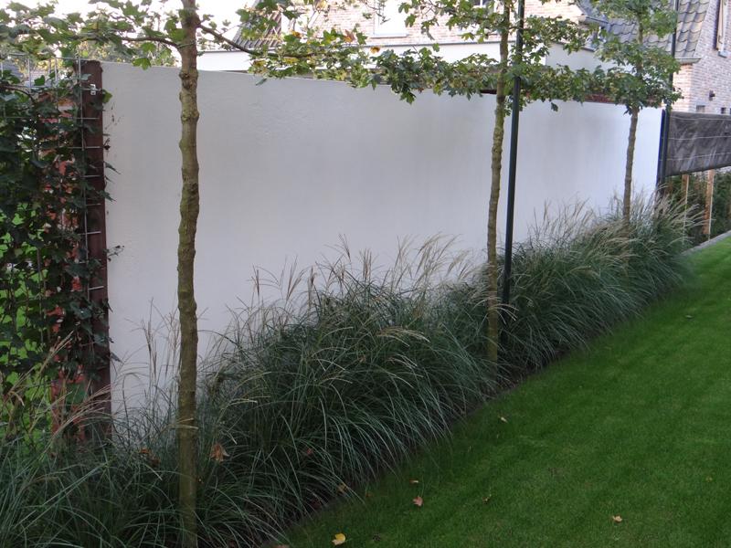 Muur Ontwerp : witte muur met bloembak witte muur met bloembak bekijk ...